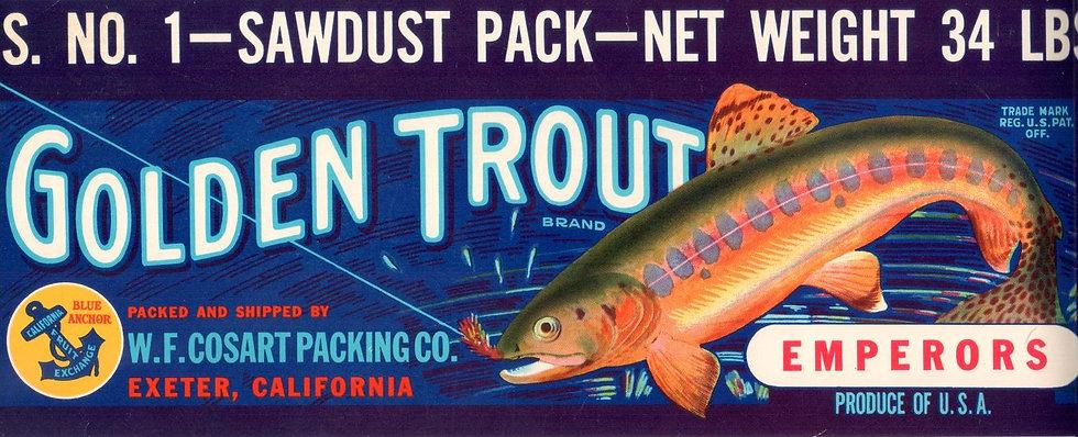 Vintage Golden Trout Exeter, CA Fruit Can Label