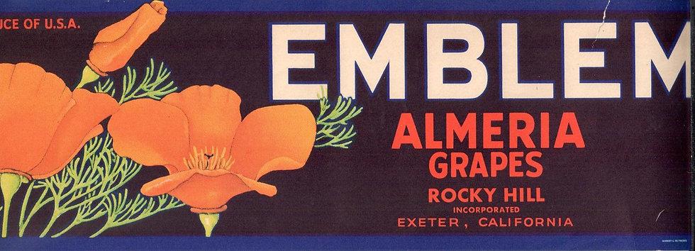 Vintage Emblem Almeria Grapes Exeter, CA Fruit Can Label