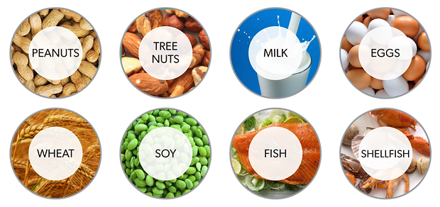Common Food Allergens.png