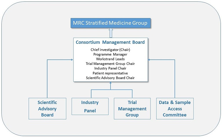 Organogram of the Medical Research Council Precision Medicine Group. The group consists of the Consortium Management board made up of the Scientific Advisory Board, the Industry Panel, the Trial Management Group and the Data & Sample Access Committee.