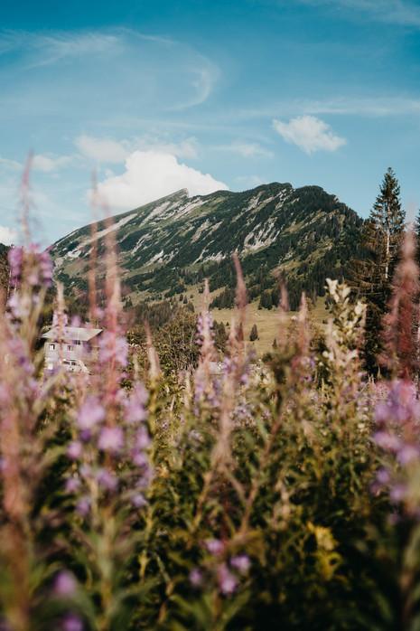 camping-amden-06039.jpg