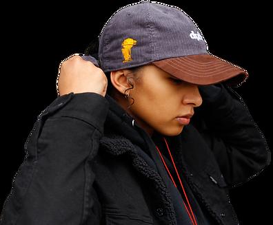Distinguish'd-hat--brown.png