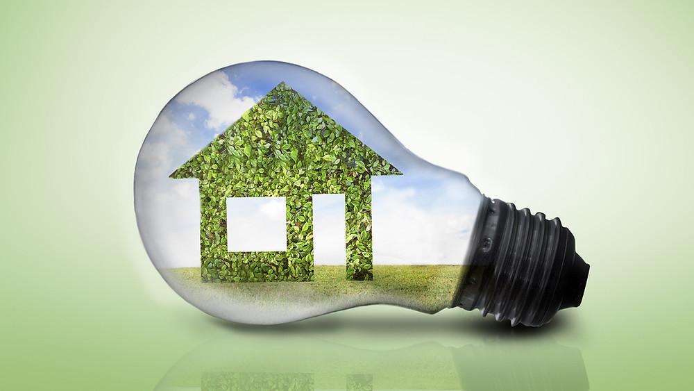 eco friendly kitchen tips