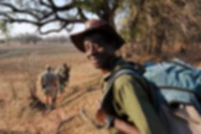 REMOTE AFRICA SAFARIS - Chikoko Trails - excellent guides.jpg