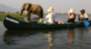 Elephant and canoe 2.JPG