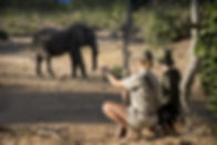 South Africa Classic Safari