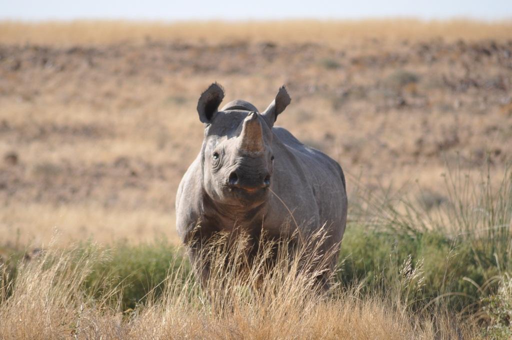 Adventure Namibia