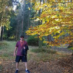 Floresta 2.jpeg