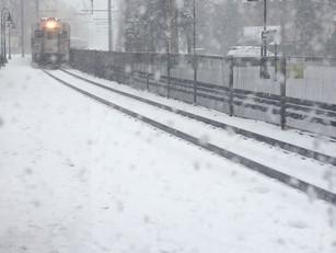 Writing on Trains