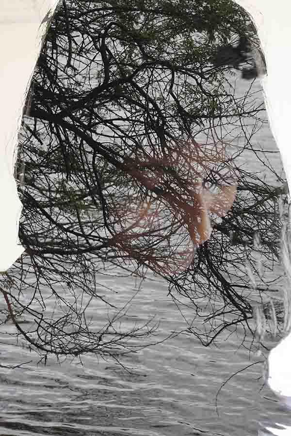 37. The Veil 1