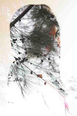 38. The Veil