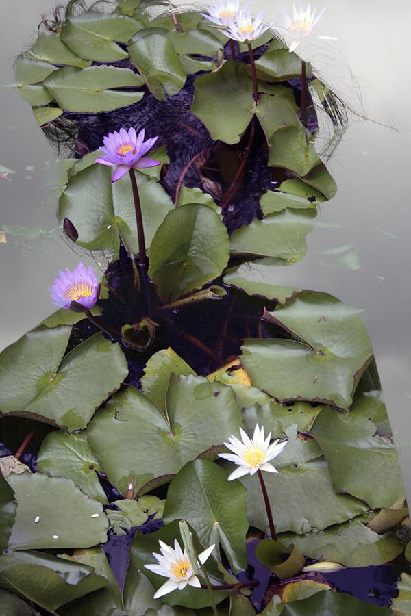4. Blossom