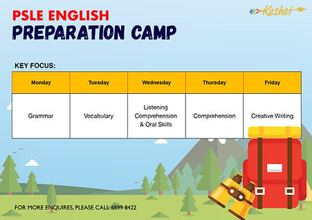 PSLE Tuition Camp
