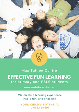 Primary PSLE Tuition Tutor