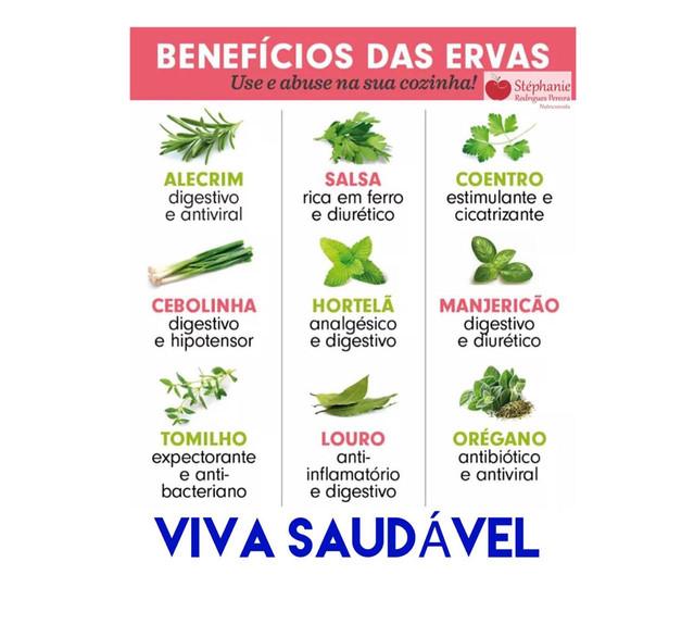 Benefícios das ervas