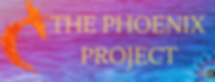 The Phoenix Challenge-2.png