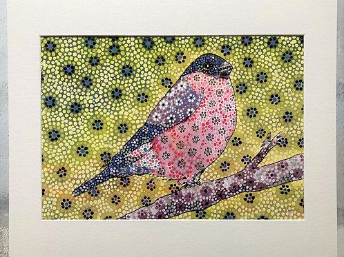 The Bullfinch Mounted A3 Print