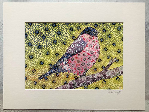 The Bullfinch Mounted A4 Print (small mount)