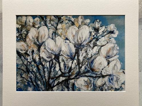 Magnolia Bush in Bloom Mounted A3 Print