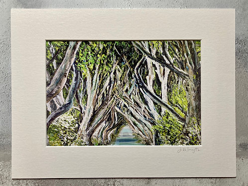 The Dark Hedges Mounted A4 Print (small mount)