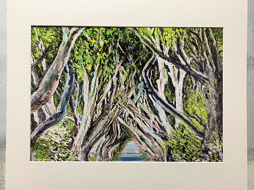 The Dark Hedges Mounted A3 Print