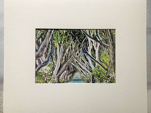 The Dark Hedges Mounted A4 Print