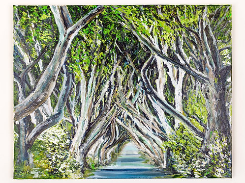 The Dark Hedges A4 Loose Print