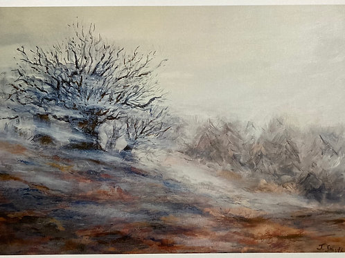 Misty Day in The Wicklow Mountains A3 Loose Print