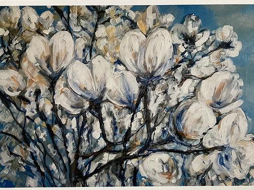 Magnolia Bush in Bloom A3 Loose Print
