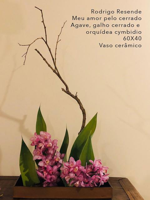 37  Rodrigo_resende3.jpg