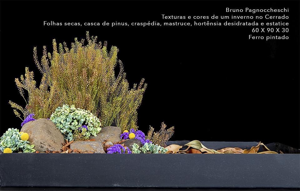 2 Bruno Pagnoccheschipsd.jpg