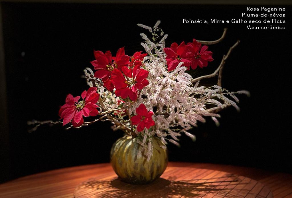 40 Rosa Paganine.jpg