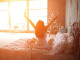Por que acordamos todos os dias?