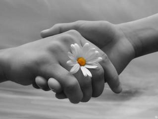 Fala-se tanto em perdão, e o que você reflete sobre ele?