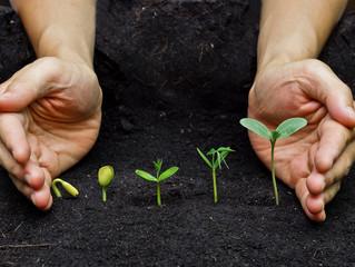 Aproveitando as oportunidades para evoluir