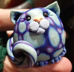 Blue and Purple Cat