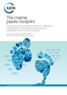 2020_Marine Plastic footprint publicatio