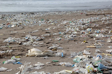 Plastik am Strand.jpg