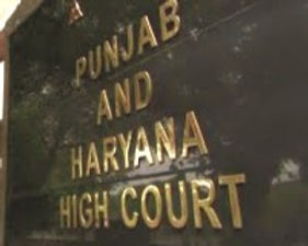 Punjab and Haryana HC said that some mischievous people in India create tension by hurting religious sentiments: