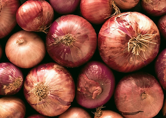 Ban on export of onion, Bombay HC seeks Centre's reply: