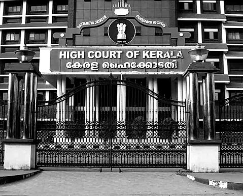 Anticipatory bail granted to three women accused of assaulting Youtuber over disgracing critiques: Kerala HC