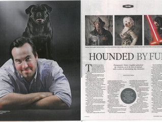 Brisbane Pet Photography in Sunday Mail