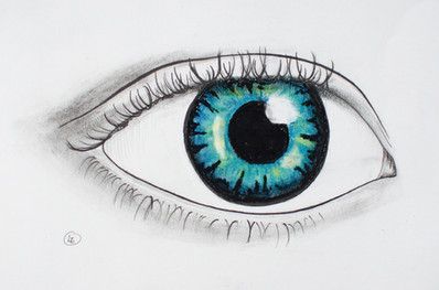 oog_LR.jpg