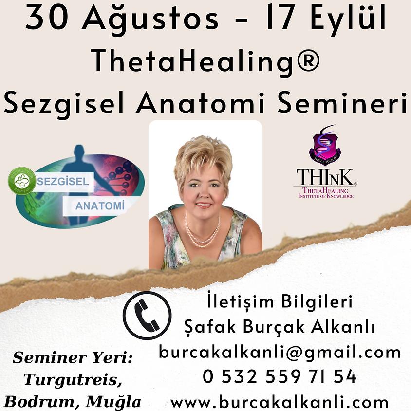 ThetaHealing® Sezgisel Anatomi Semineri