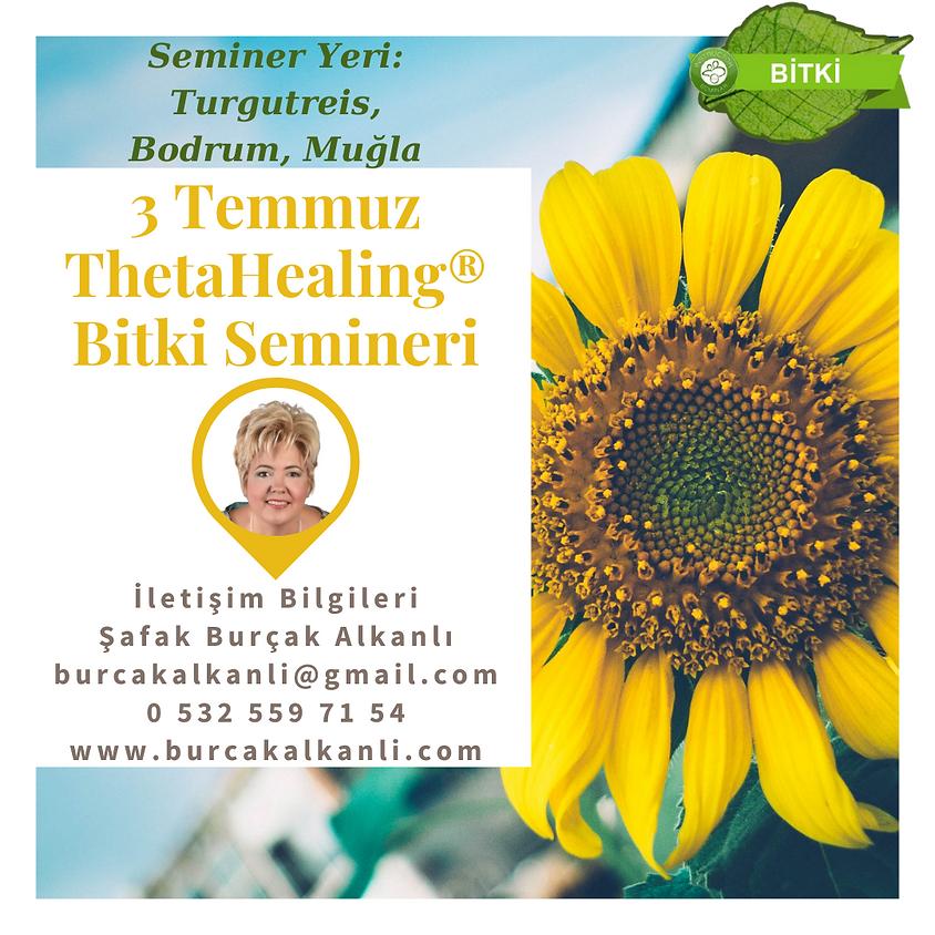 ThetaHealing® Bitki Semineri