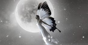 """""""İnsanın kanadı, gayretidir.'' Hz.Mevlana"""
