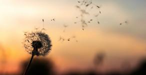 Corona Virüs'e Yakalanmamak İçin Ne Yapabiliriz?