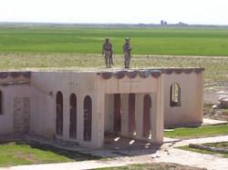 Tigers_in_Iraq 074