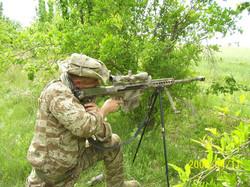 Tigers_in_Iraq 025