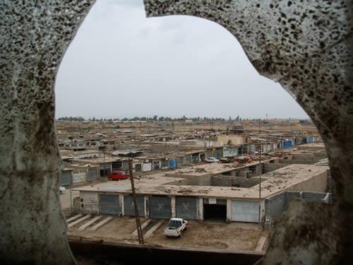 Tigers_in_Iraq 029